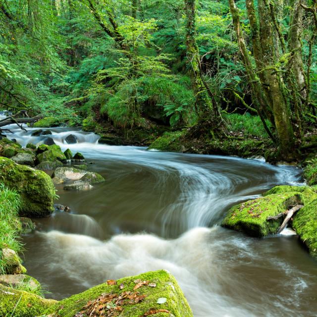"""Golitha Falls in Cornwall"" stock image"