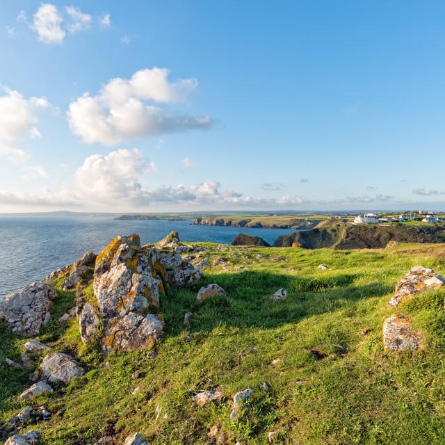 """""""The Lizard Coast in Cornwall"""" stock image"""