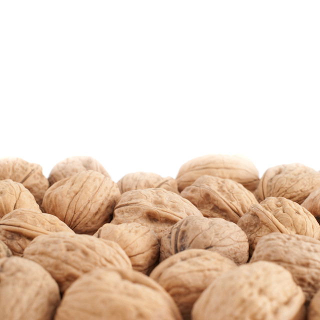 """Walnuts"" stock image"