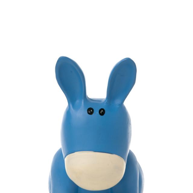 """""""Cute donkey"""" stock image"""