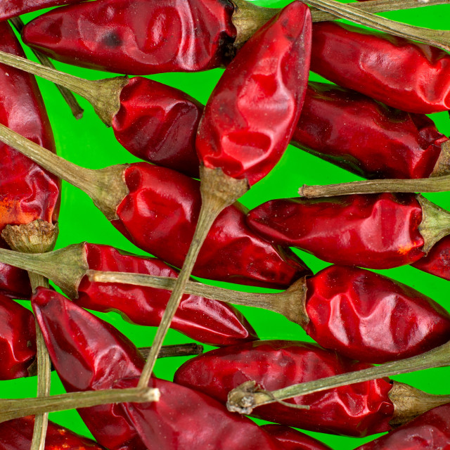 """Red chilli peppers"" stock image"