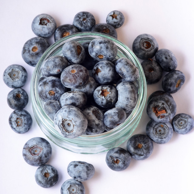 """Pot of Blueberries"" stock image"