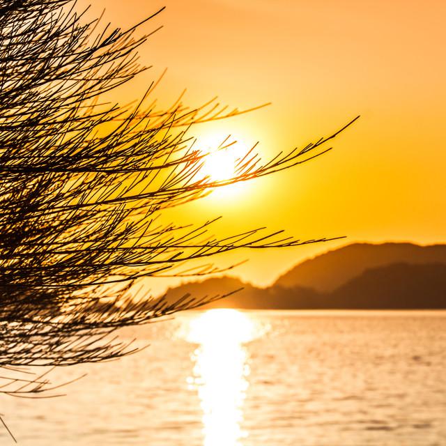 """""""Sunset Langkawi"""" stock image"""