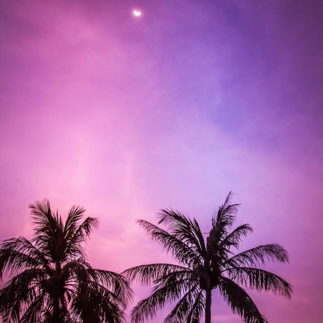 """Purple sky"" stock image"