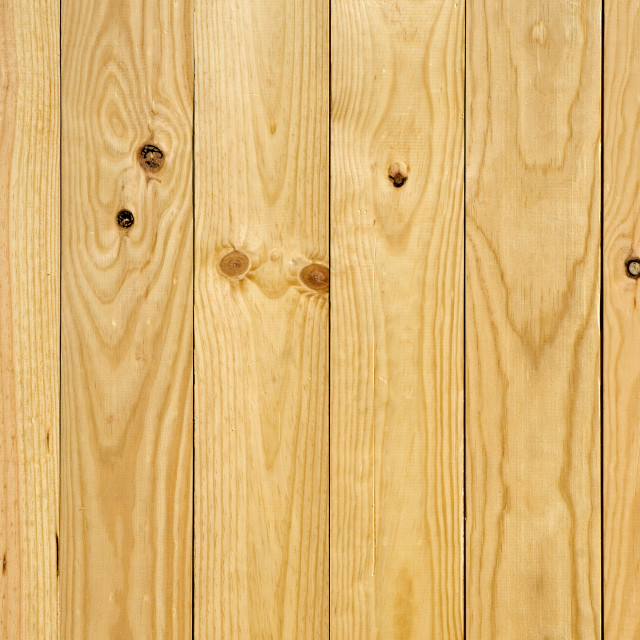 """Texture of pine wood"" stock image"