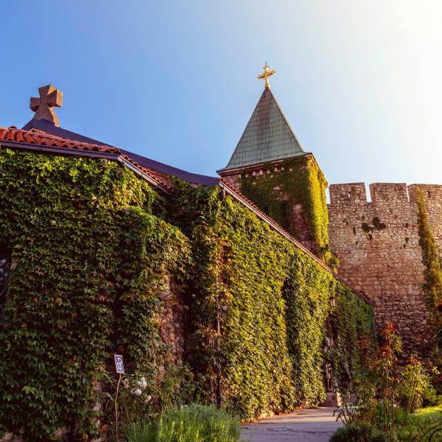 """""""Ruzica church at Belgrade fortress Kalemegdan. Belgrade, Serbia."""" stock image"""