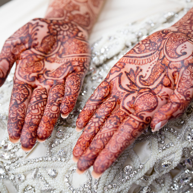 """Henna Palms"" stock image"