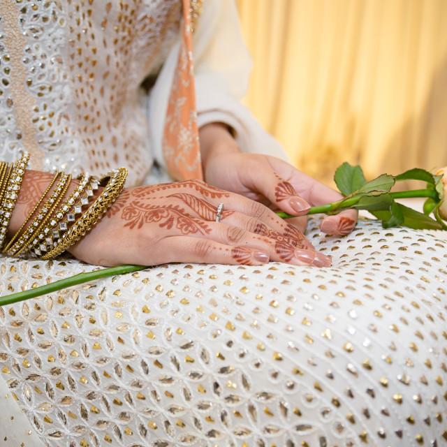 """Bride holding rose"" stock image"