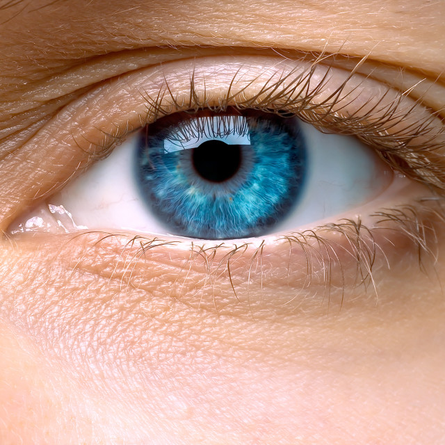 """Macro of a woman's blue eye"" stock image"