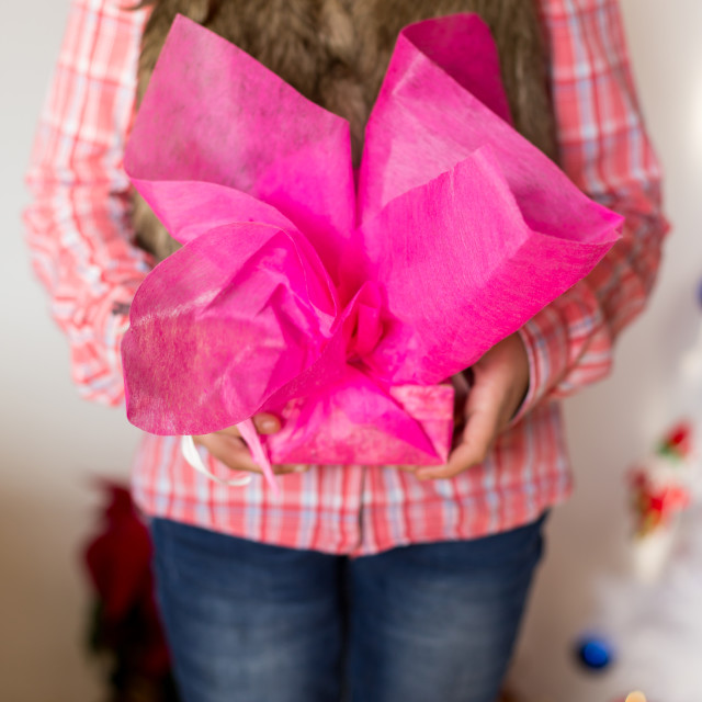 """Girl presenting a gift"" stock image"
