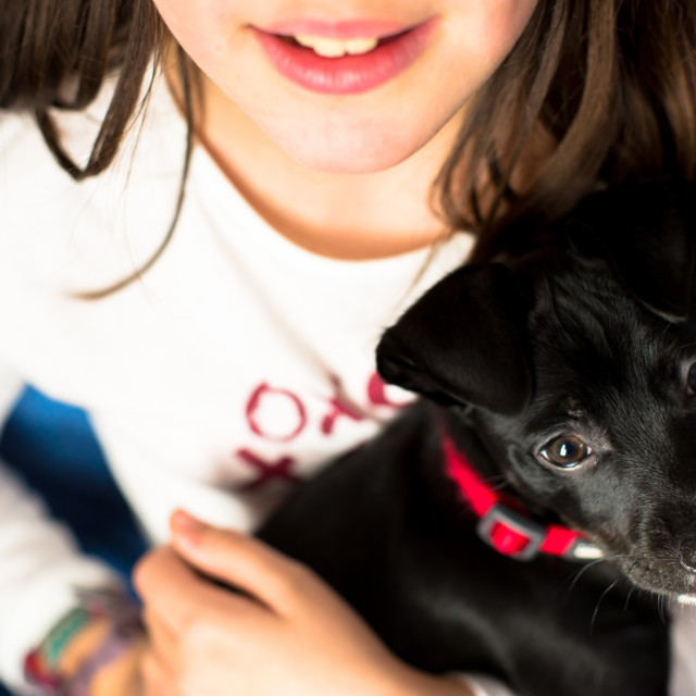 """Girl with her dog"" stock image"