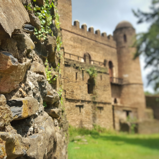 """Ethiopian castle, Gondar"" stock image"