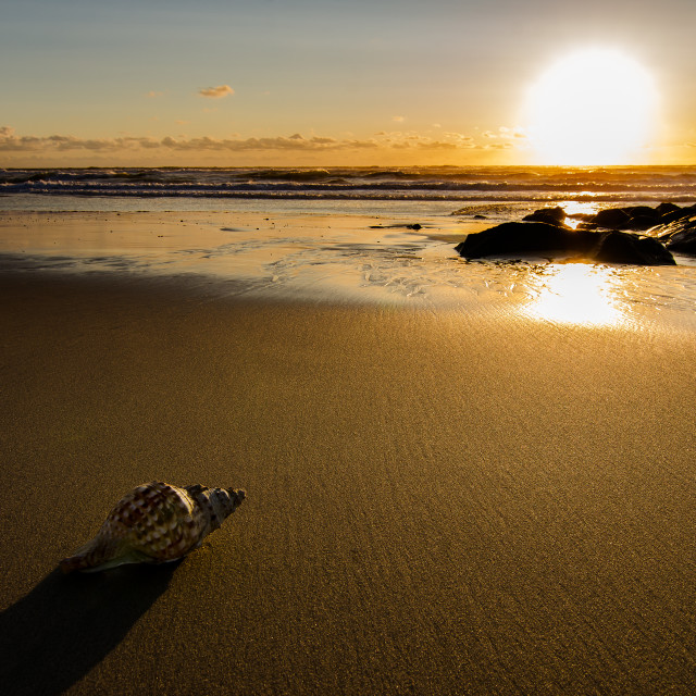 """Sunset on the beach"" stock image"