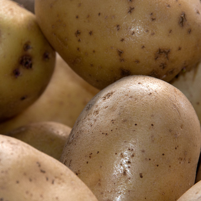 """Potatoes"" stock image"