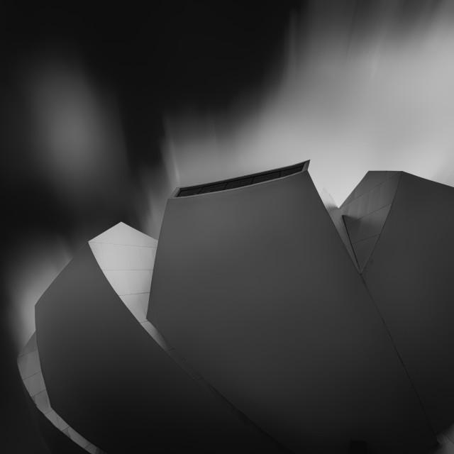 """""""The Lotus - Study II"""" stock image"""