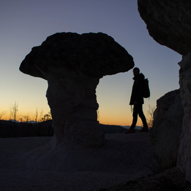 """Giant mushroom"" stock image"