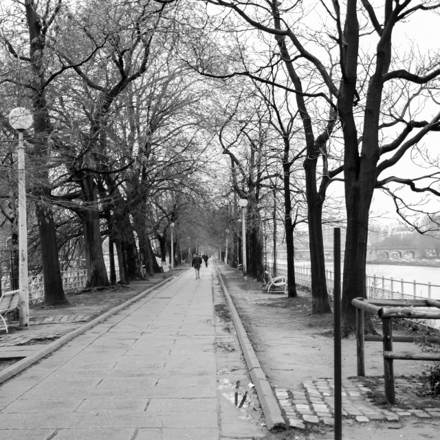 """Park near Seine river in Paris"" stock image"
