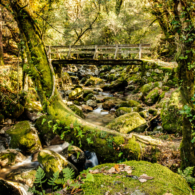 """""""Waterfall in the portuguese national park of Geres"""" stock image"""