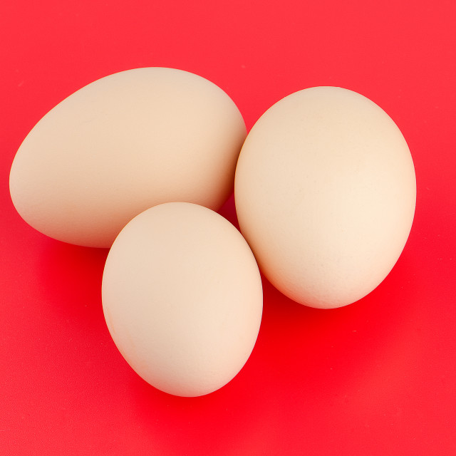 """Three brown eggs"" stock image"
