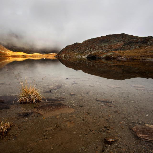 """Light through the fog"" stock image"