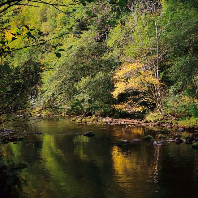 """Autumn Reflections in River, Brecon Beacons"" stock image"