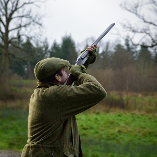 """""""The Gun Takes His Aim"""" stock image"""