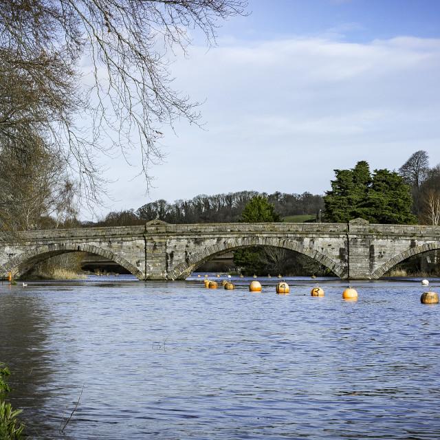 """""""Totnes Stone Bridge"""" stock image"""