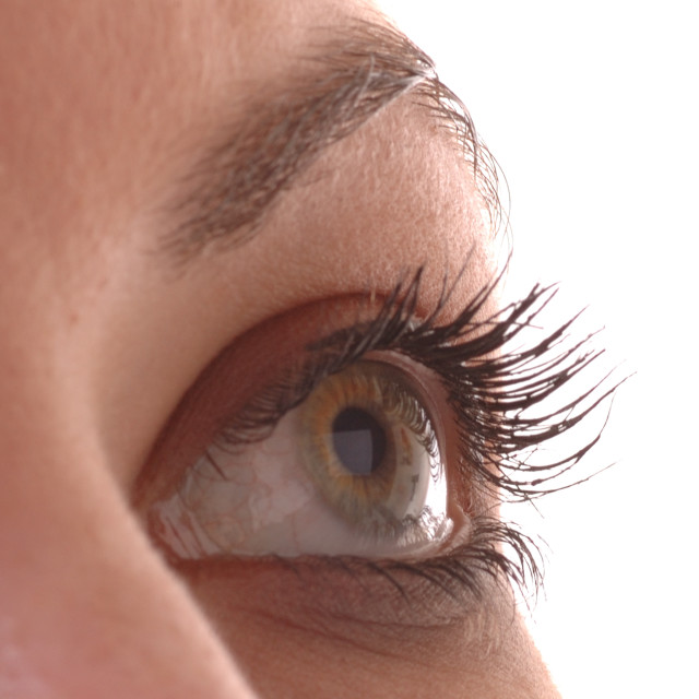 """Close Up of Eye"" stock image"