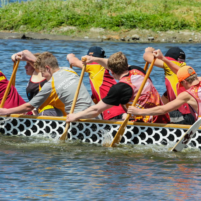 """dragon boat crew"" stock image"