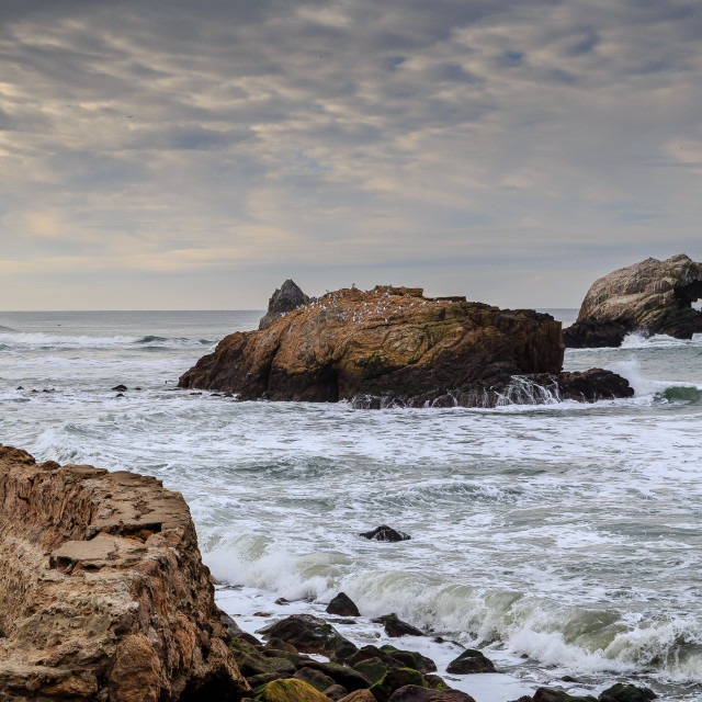 """""""Rock formation off the coast of San Francisco"""" stock image"""