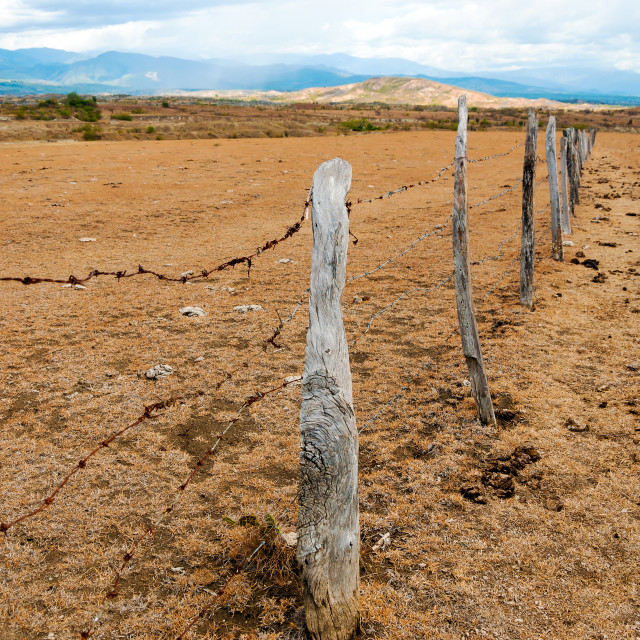 """""""Old Fence Posts"""" stock image"""