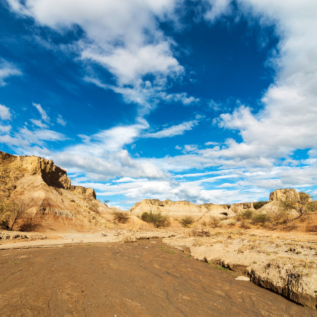 """Dry River Bed"" stock image"