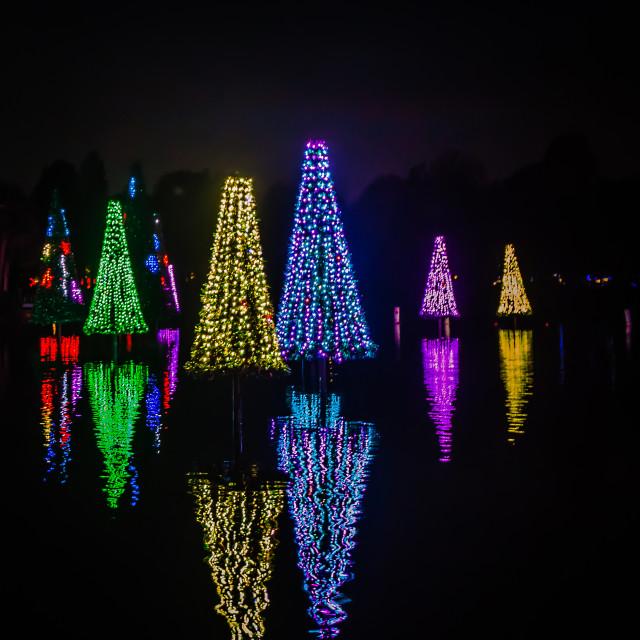 """""""Reflective Christmas"""" stock image"""