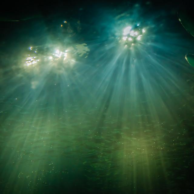"""Dancing Lights"" stock image"
