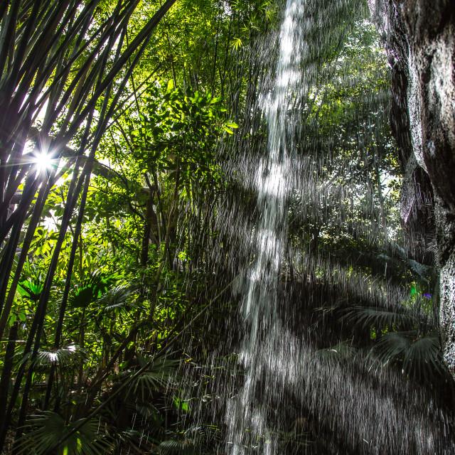 """""""Sunlit Falls"""" stock image"""