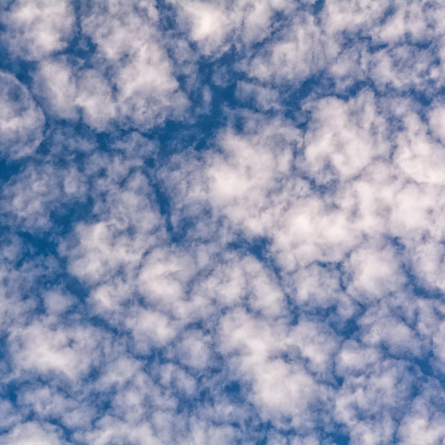 """sky background with a tiny clouds"" stock image"