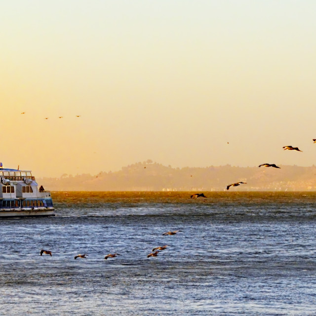 """""""Ferry on the bay"""" stock image"""