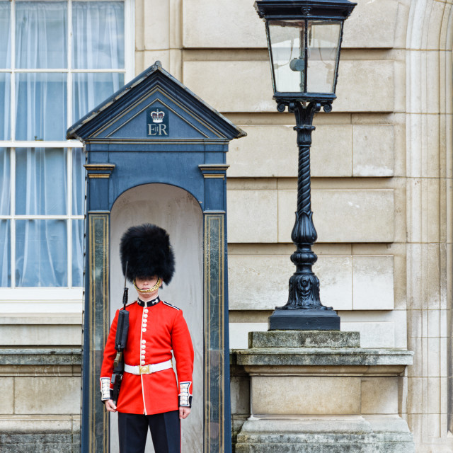 """Queens Guard on Sentry duty"" stock image"