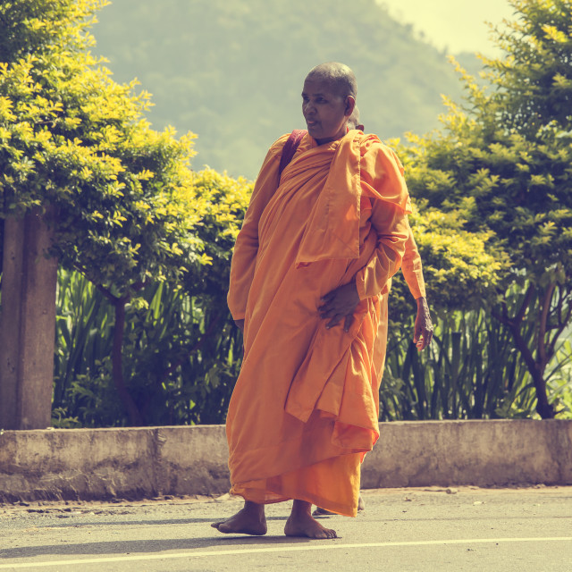 """Female buddhist monk"" stock image"