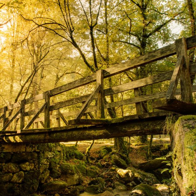 """Wood Bridge in Geres"" stock image"
