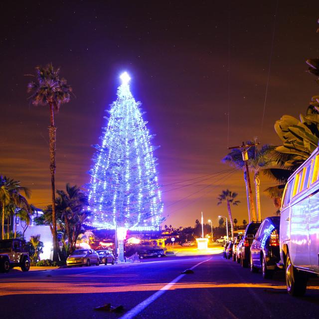 """California Christmas"" stock image"