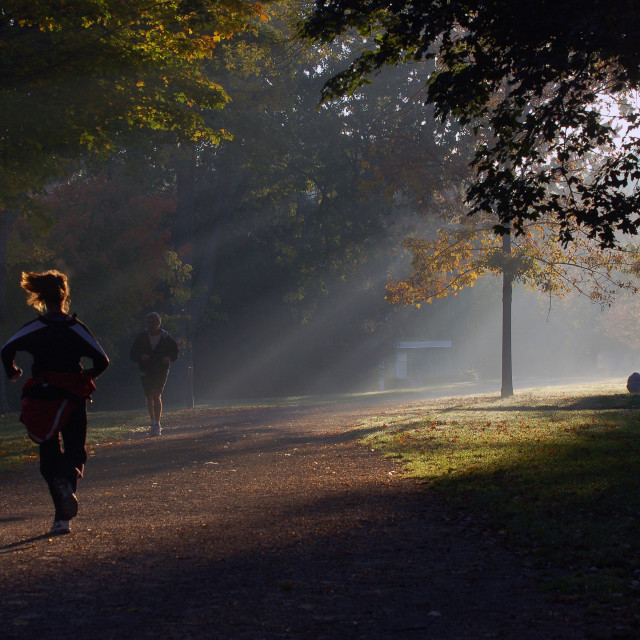 """""""Morning Run"""" stock image"""