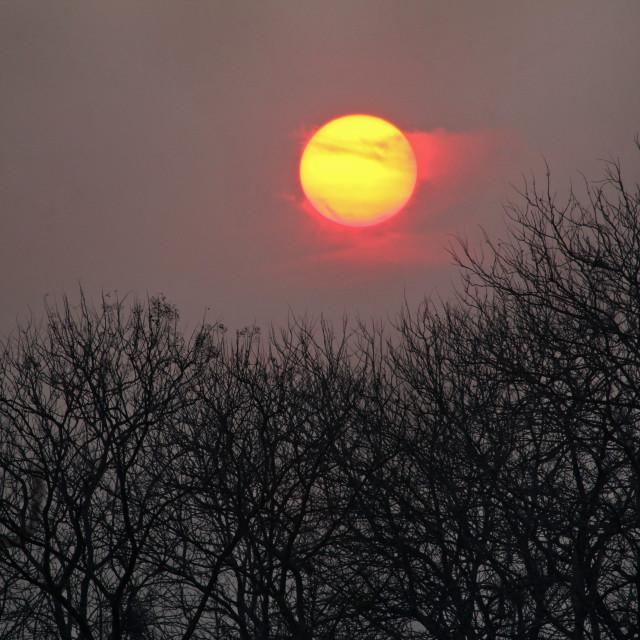 """sunrise in the dry season"" stock image"