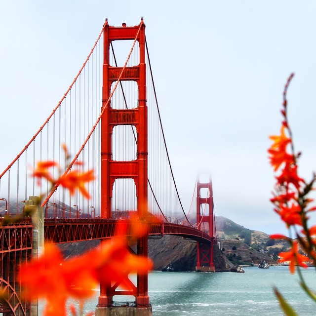 """golden gate bridge San Francisco"" stock image"