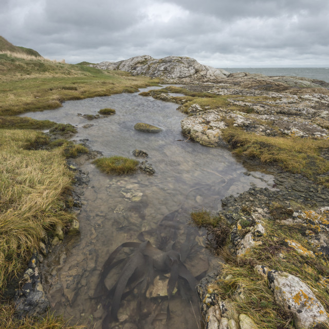 """Coastal Rock Pool"" stock image"