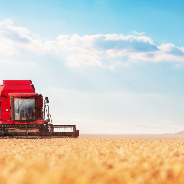 """""""Combine harvesting wheat and cloudscape"""" stock image"""