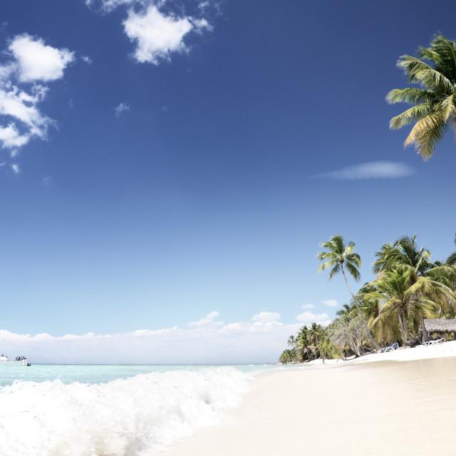 """Tropical, empty beach, Saona Island"" stock image"