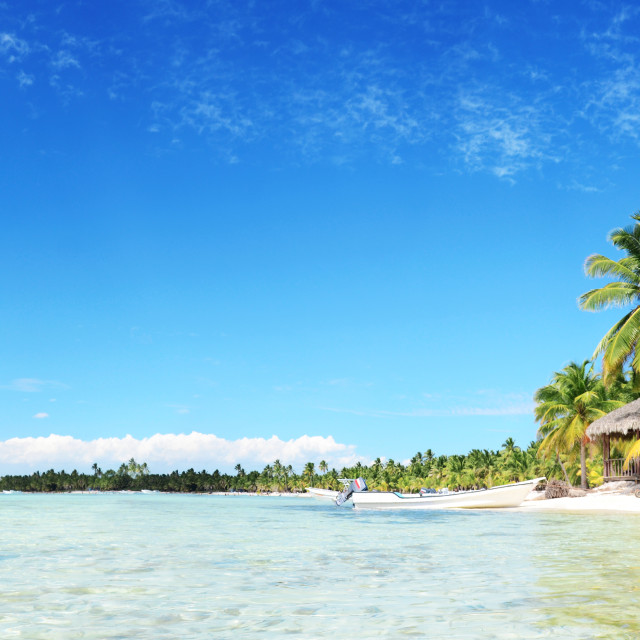 """""""Carefree young woman relaxing on tropical beach panorama"""" stock image"""