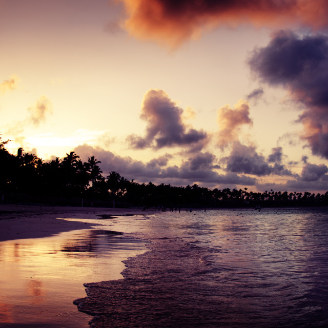 """""""Beautiful sunset over the tropical beach in Punta Cana, Dominica"""" stock image"""