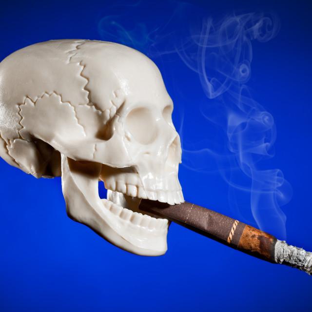 """""""Smoking skull"""" stock image"""